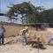 CONSTRUCCIÓN DE CANCHA MULTIPLE Y ESCENARIO EN PTO PITAHAYA